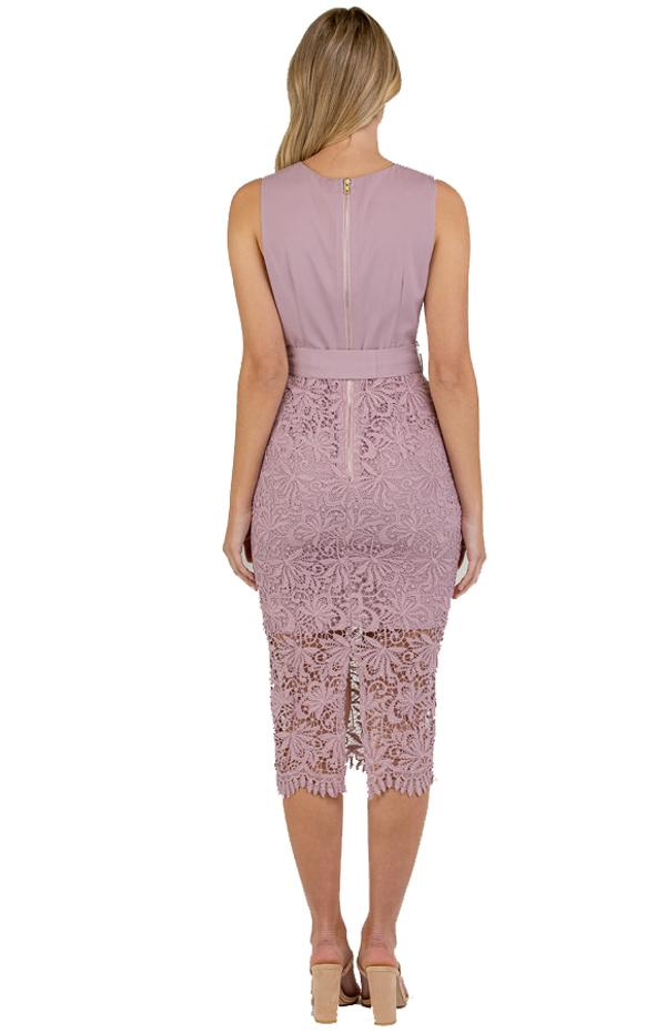 Veronica Lace Contrast Dress back